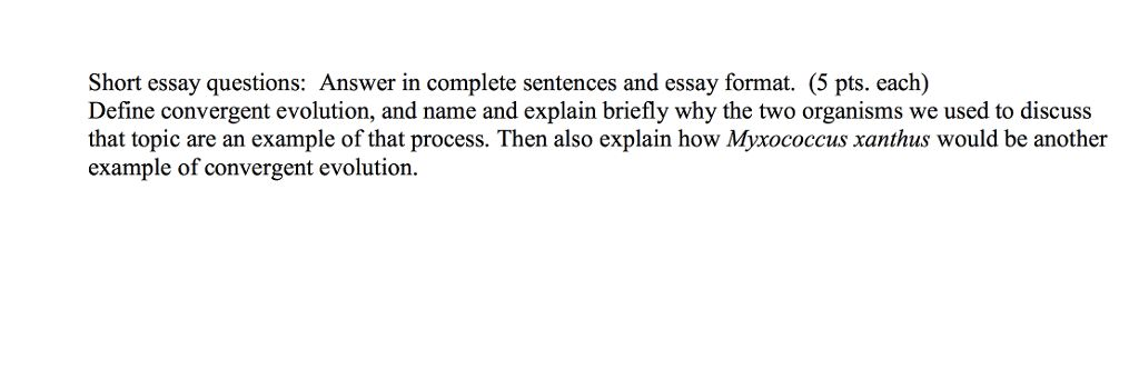 Short Essay Questions: Answer In Complete Sentence... | Chegg.com
