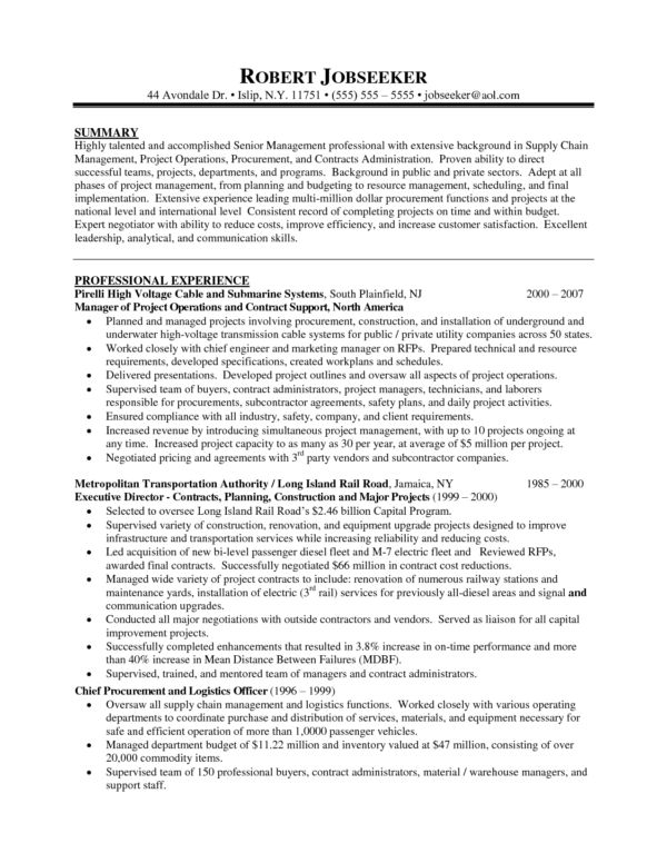 Senior IT Program Manager Resume Sample for Your Inspirations ...