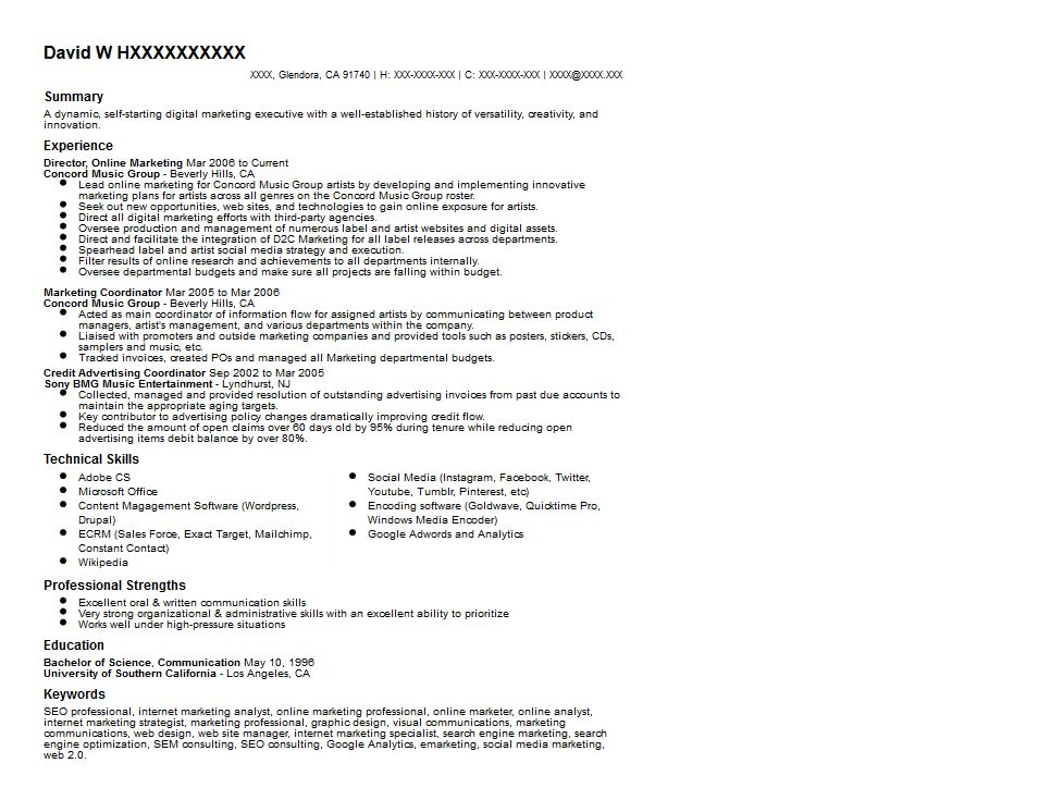 Digital Marketing Executive Resume Sample | Resumes ...