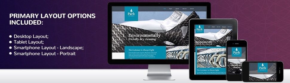 Website Template #51342 Park Dry Cleaning Custom Website Template ...
