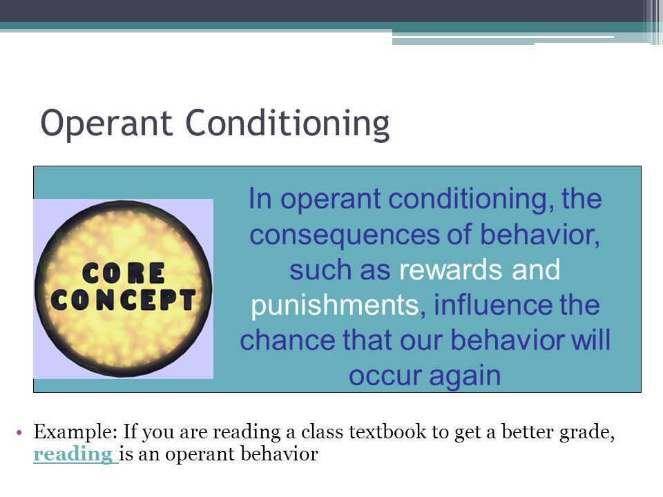 Operant Conditioning. Activity WHO WANTS TO BE OUR VOLUNTEER ...