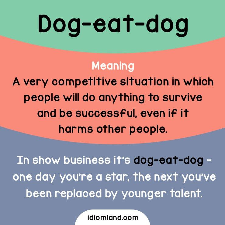 Idiom of the day: Dog-eat-dog. Meaning: A very competitive ...