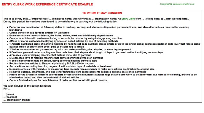 Clinic Data Entry Clerk Work Experience Letters