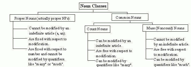 Noun Types and Noun Phrases