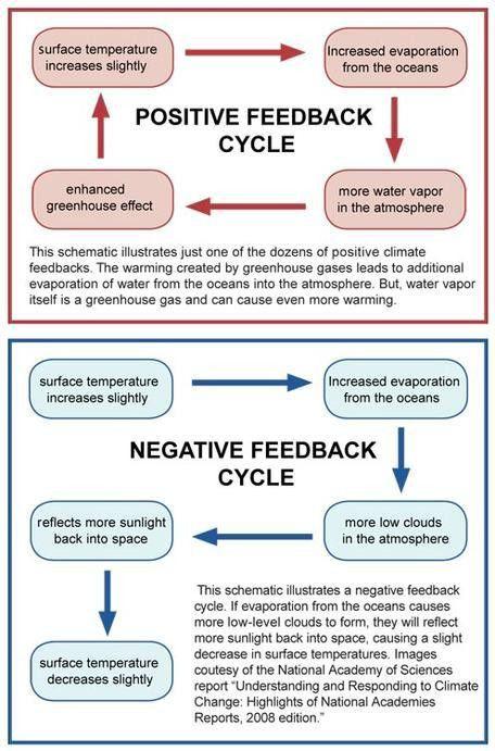 2C: Carbon Cycle Feedbacks