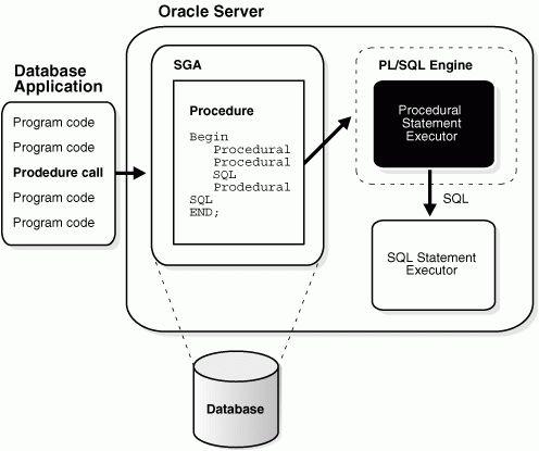 SQL, PL/SQL, and Java