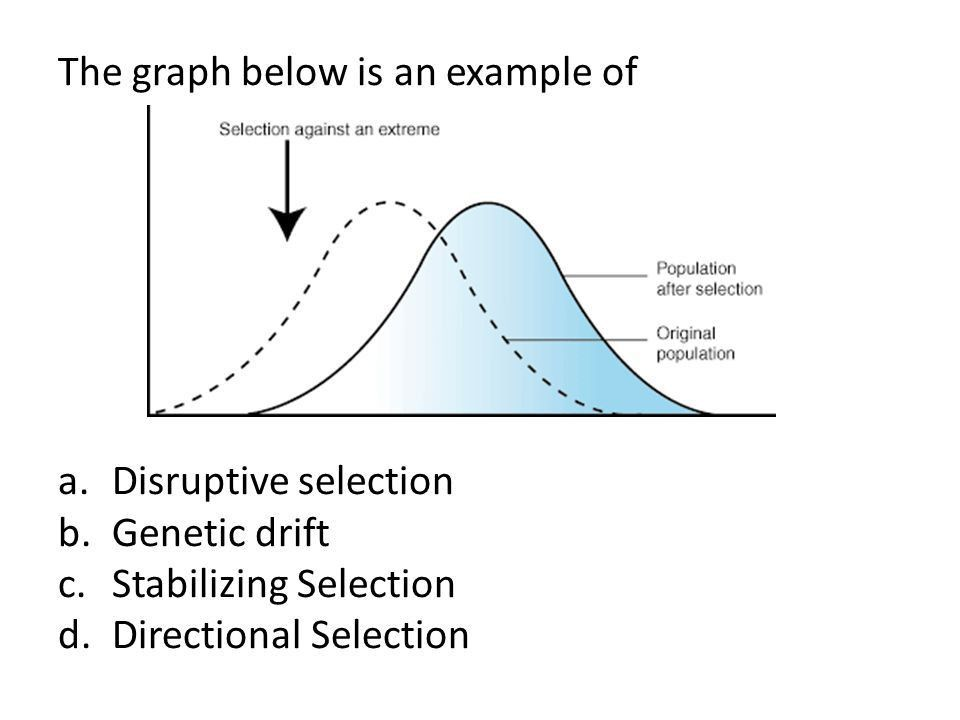 Evolution of Populations. Gene Pools 1.All of the genes in a ...
