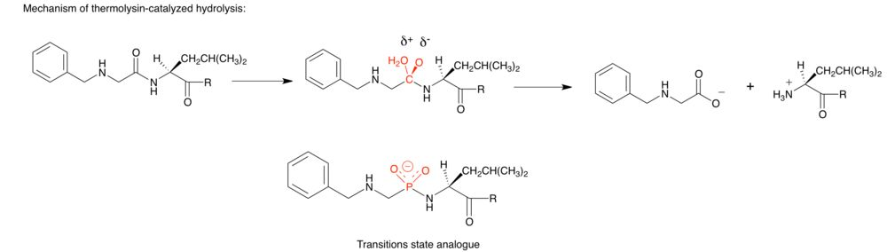 Transition state analog - Wikipedia