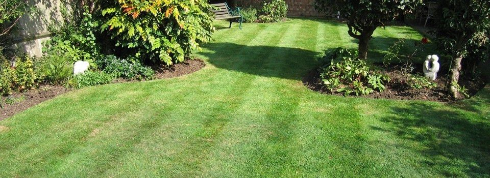 Your lawn care company in Austin, TX - Affordable Lawn Maintenance