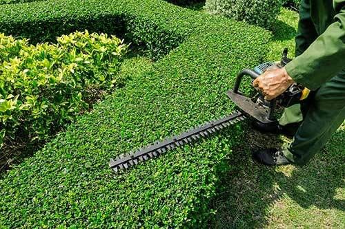 TheLawnCareGuys.com - Gulfport, MS Lawn Mowing and Lawn Care