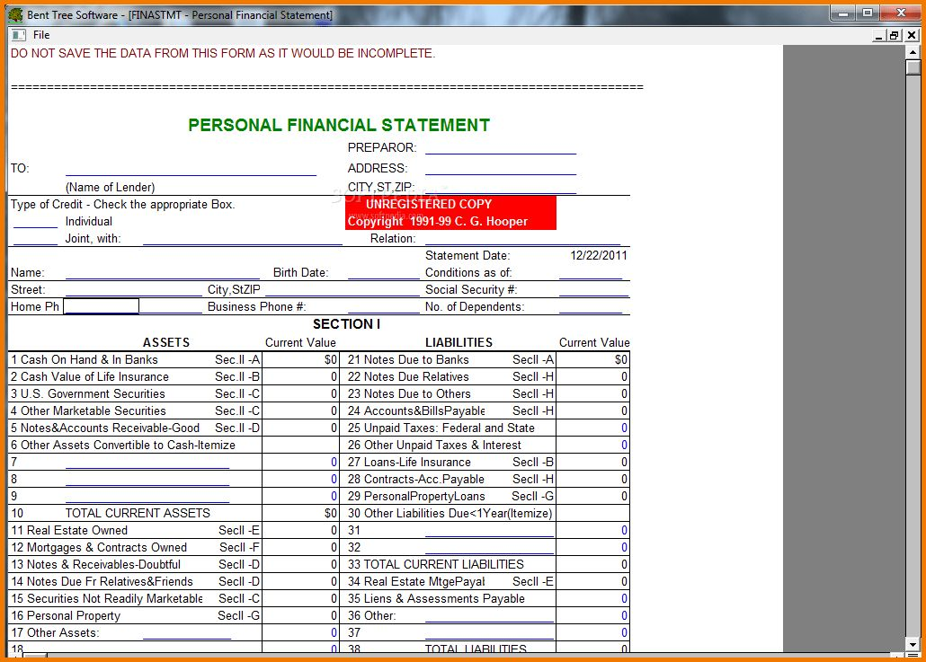 13 personal financial statement form free download | Financial ...