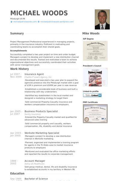 Insurance Agent Resume samples - VisualCV resume samples database