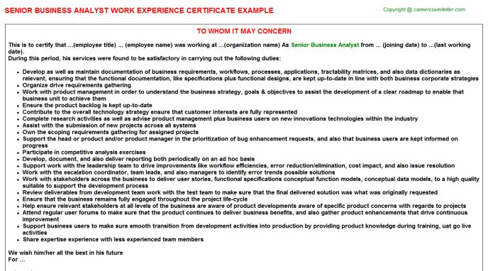 Senior Business Analyst Work Experience Certificate