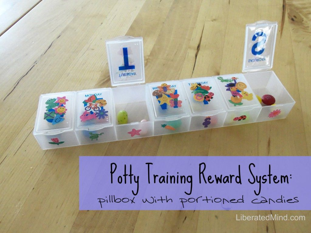3 Day Potty Training: A Mother's Diary – LiberatedMind