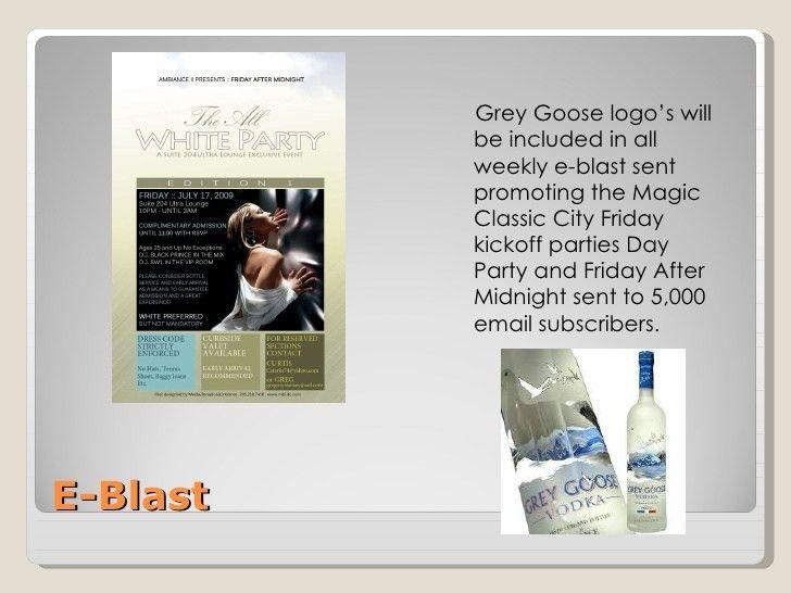 2010 sponsorship proposal for goose