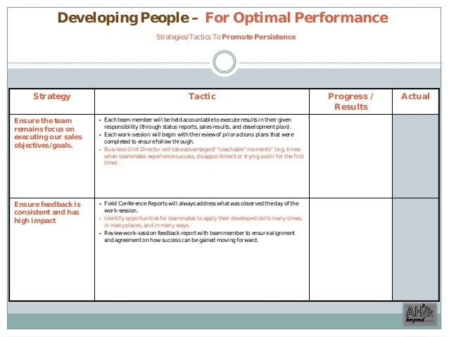 Commercial Excellence Sales Plan (Example)