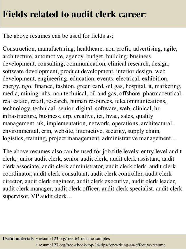 Top 8 audit clerk resume samples