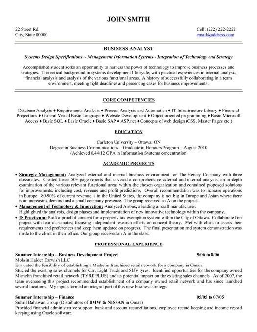 Sample Business Summary Template. Senior It Manager Resume Example ...