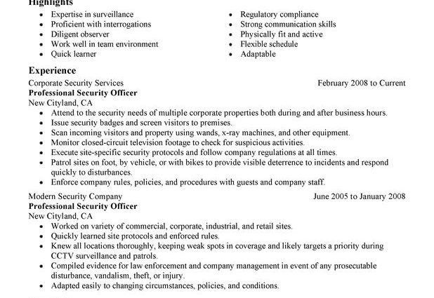 Professional Security Officer Resume Sample summary highlights ...
