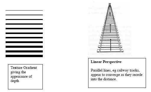 Visual Perception | Simply Psychology