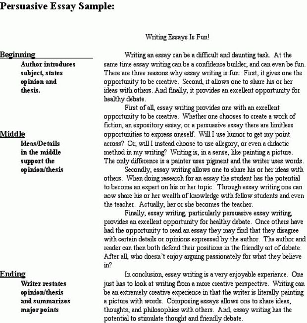 persuasive essay example middle school write essay middle school ...