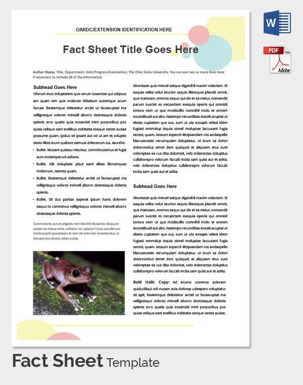 Fact Sheet Template   15+ Free Word, PDF Documents Download .  Information Sheets Templates
