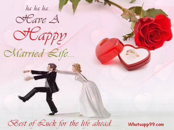 Best of luck for the life ahead funny wedding wishes   whatsapp99.com