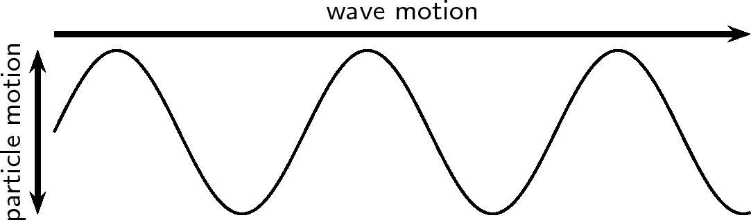 Transverse Waves - Grade 10 [CAPS]
