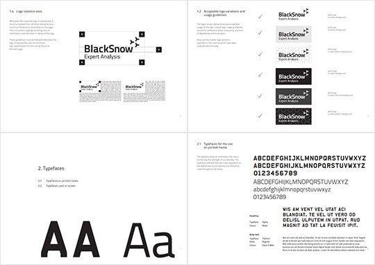 Blacksnow Identity Design | Matter Design