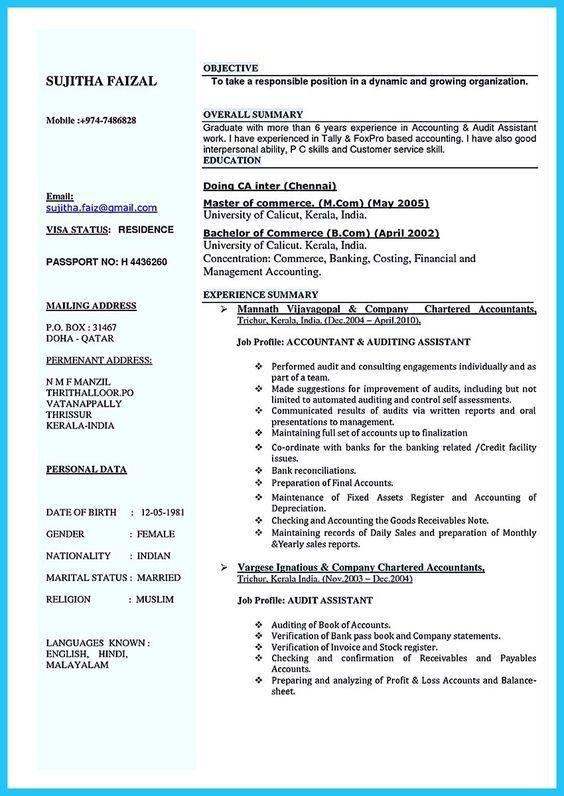auditing resume examples resume professional writers internal