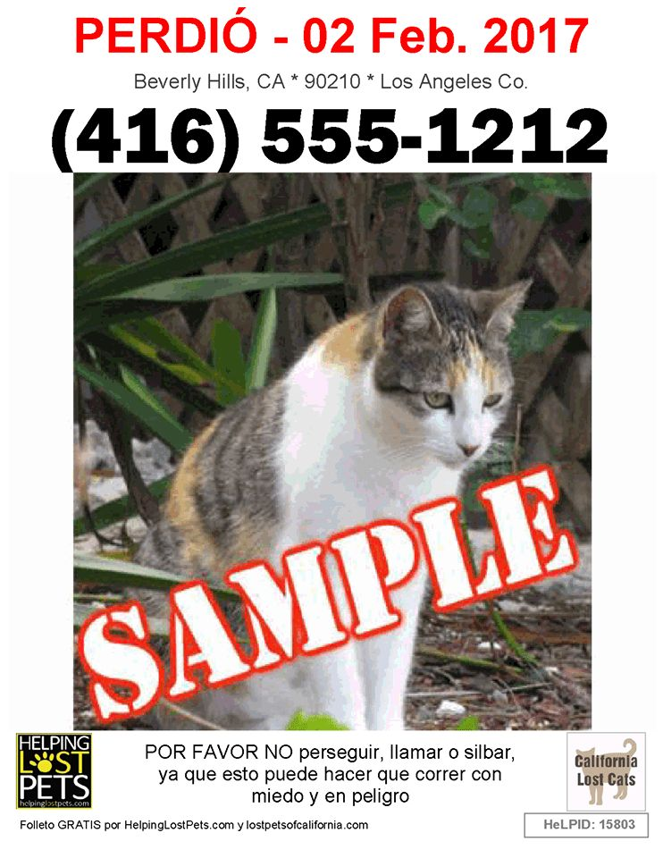 Lost or Found a Pet? Helping Lost Pets Now Offers Free Multi ...
