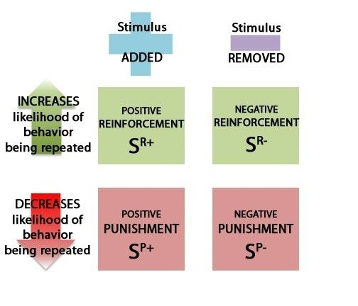 What are some examples for positive reinforcement and negative ...