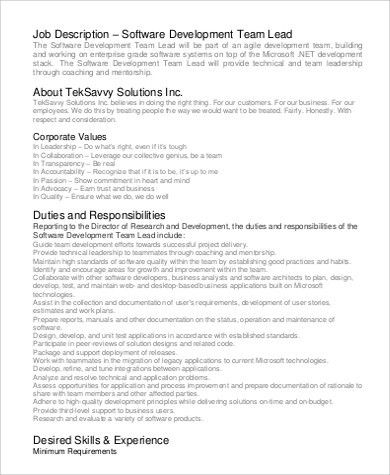 software support engineer job description
