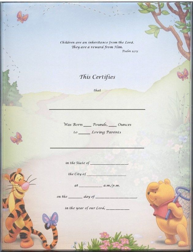 Birth Certificate Template For School Project with Winnie The Pooh ...