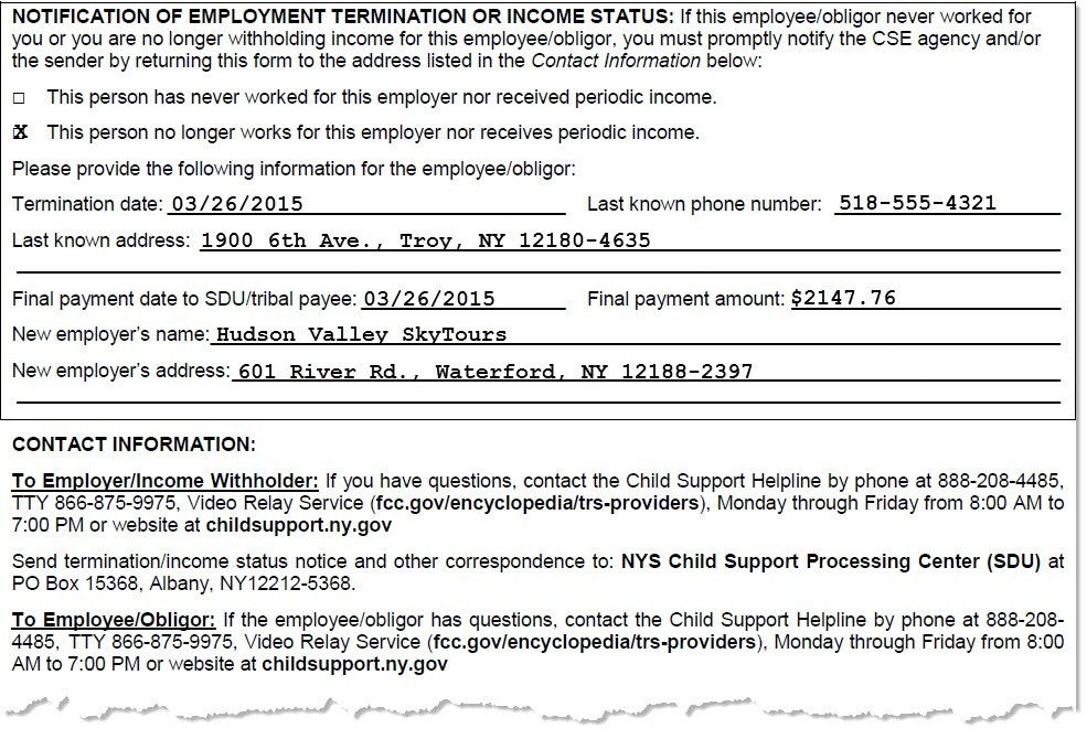 NYS DCSE | Report Terminations