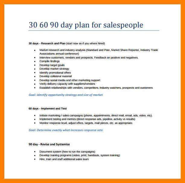 8+ 30 60 90 day plan template word   packaging clerks