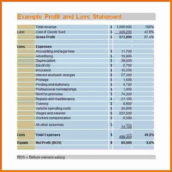 Profit And Loss Statement Sample.Example Profit And Loss ...