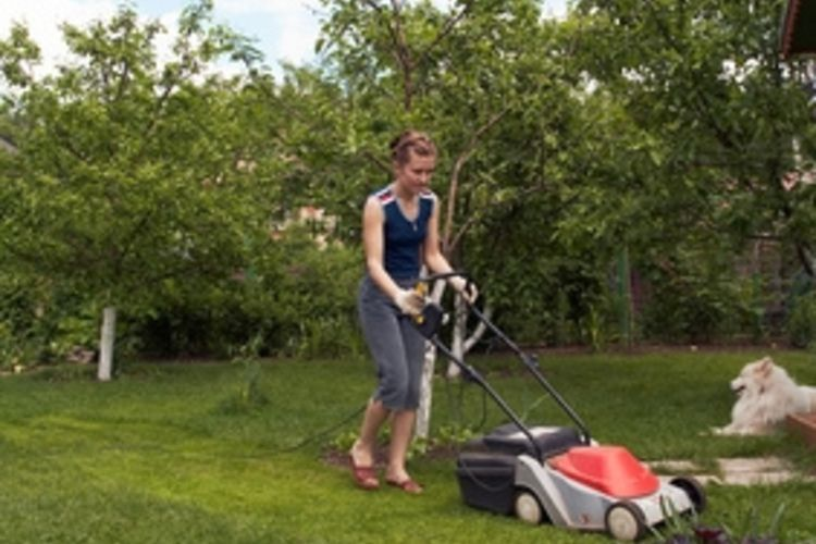 MOWING TEEN STARTING A LAWN CARE BUSINESS | LAWNMOWERS SNOWBLOWERS