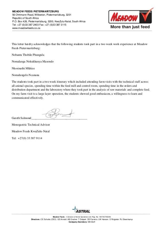 Student Work Experience letter