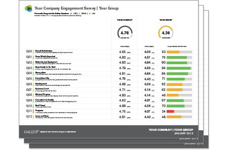 Gallup Q12 Employee Engagement Survey
