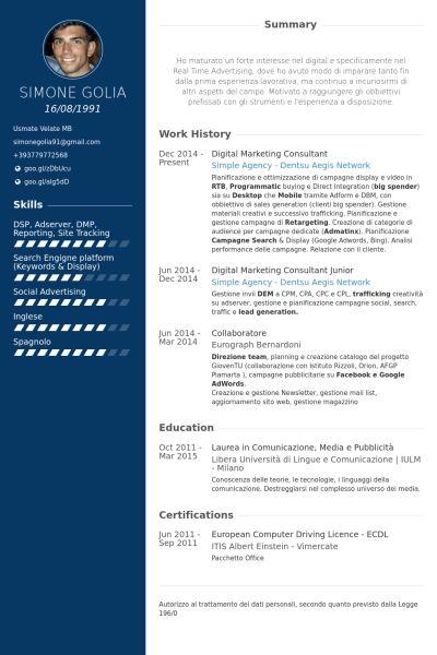 Digital Marketing Consultant Resume samples - VisualCV resume ...