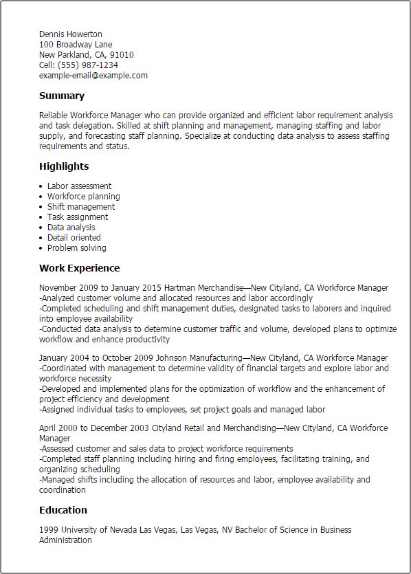 Professional Workforce Manager Templates to Showcase Your Talent ...