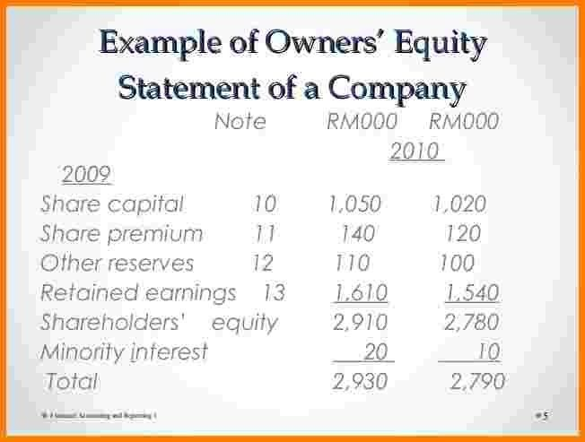 5+ owner's equity statement example | Case Statement 2017