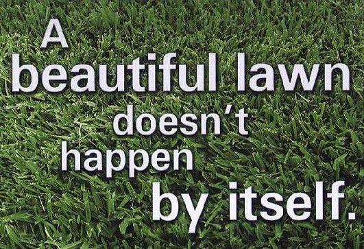 Lawn Care Rockford, Lawn Mowing Rockford, Rockford Lawn Mowing ...