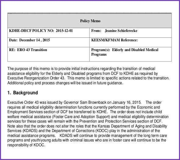 POLICY MEMO FORMAT | Jobproposalideas.com