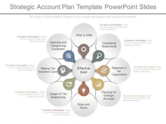 Strategic Account Plan Template Powerpoint Slides - PowerPoint ...