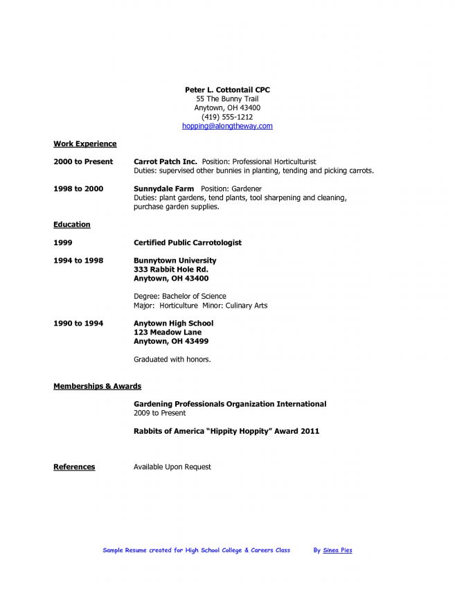 resume for high school students with no experience resume