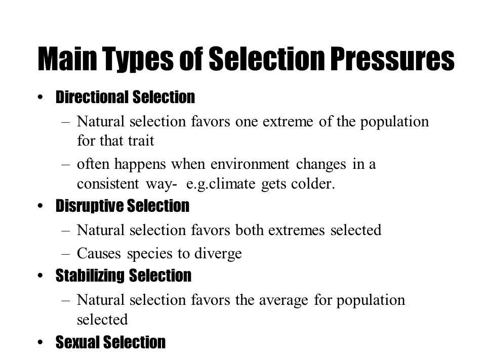 Natural Selection the process whereby organisms better adapted to ...