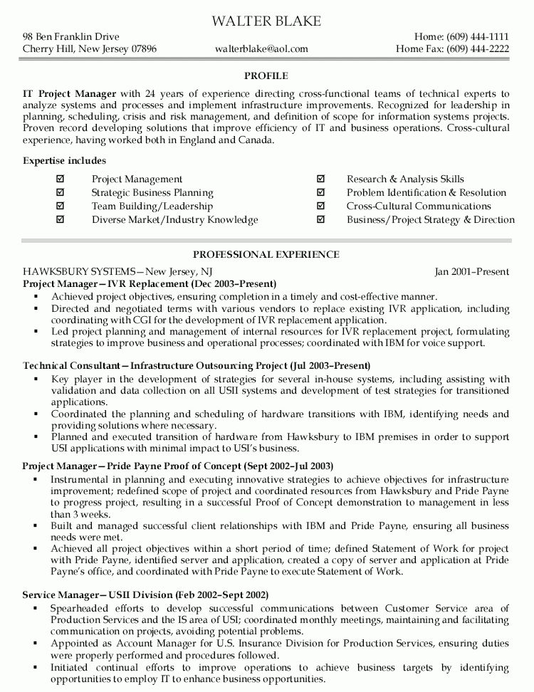 it director sample resume it resume writer technical resume writer ...