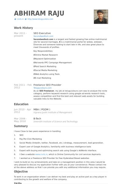 Seo Executive Resume samples - VisualCV resume samples database